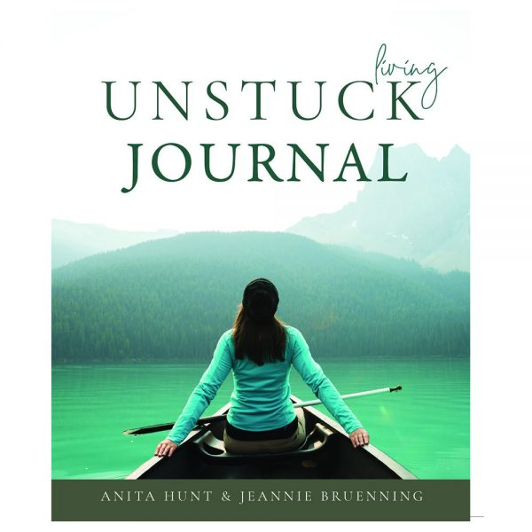 living unstuck journal companion to the lIving unstuck book by jeannie Bruenning